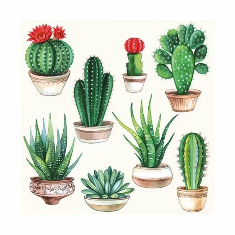 картинки для декупажа кактусы парочку
