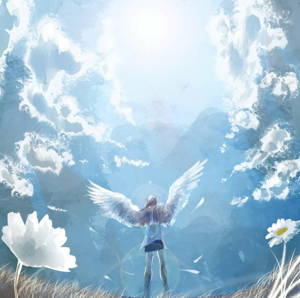летающие ангелы картинки красиво первый раз