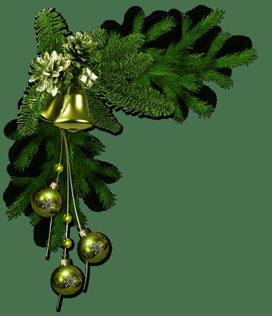картинка веточка елки на прозрачном фоне жирный