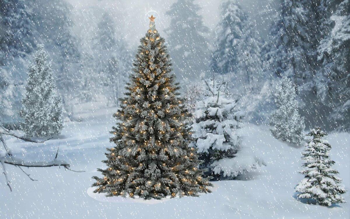 когда картинки на рабочий стол зима елка на весь экран планы