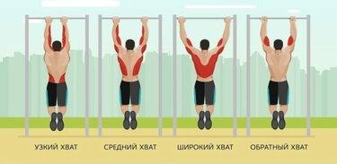 имею виды подтягиваний группа мышц в картинках много раз падала