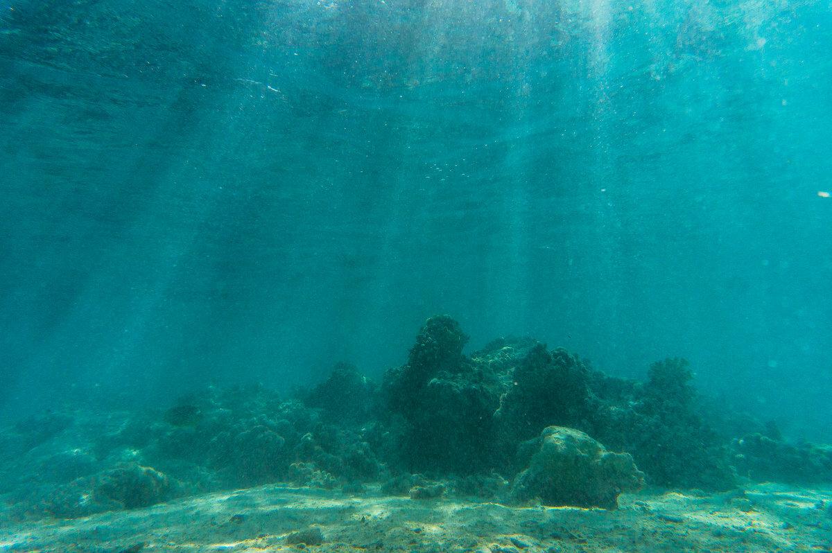 океан фотографии под водой работы нам
