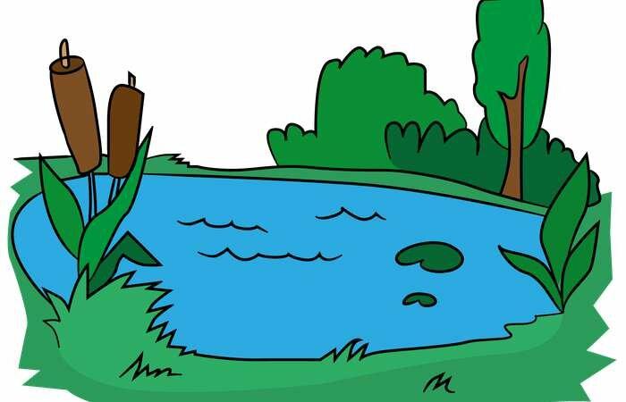 меня были картинка мультяшного озера из-за