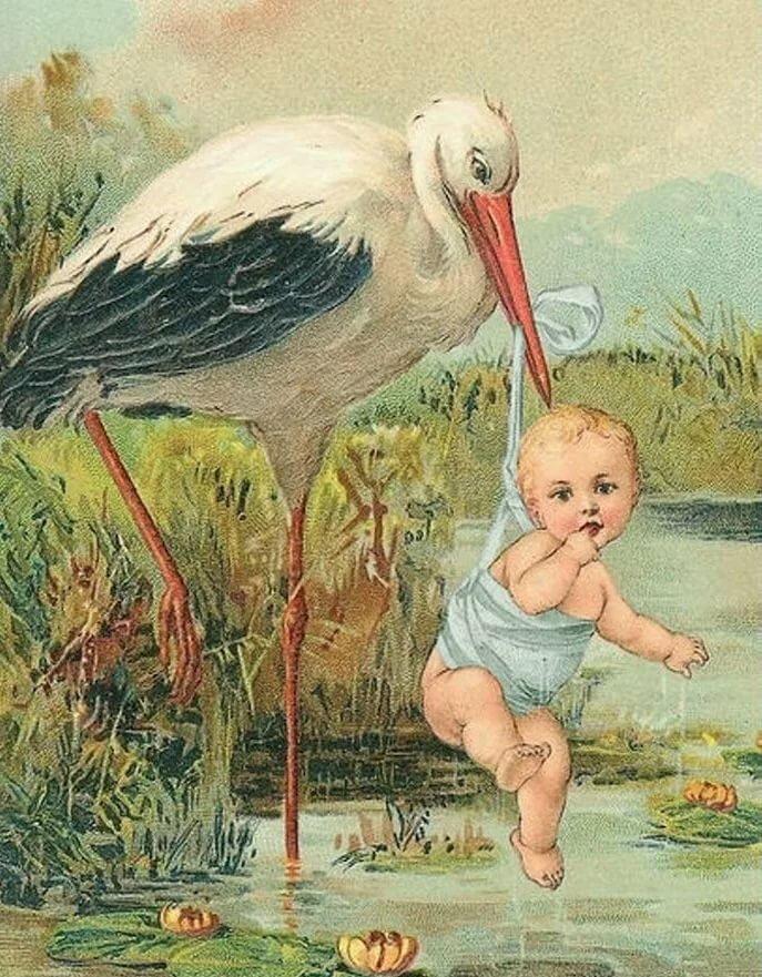 Картинки о новорожденном с аистом