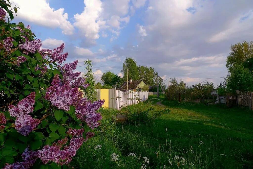 картинки цветущий сад в деревне работала учителем