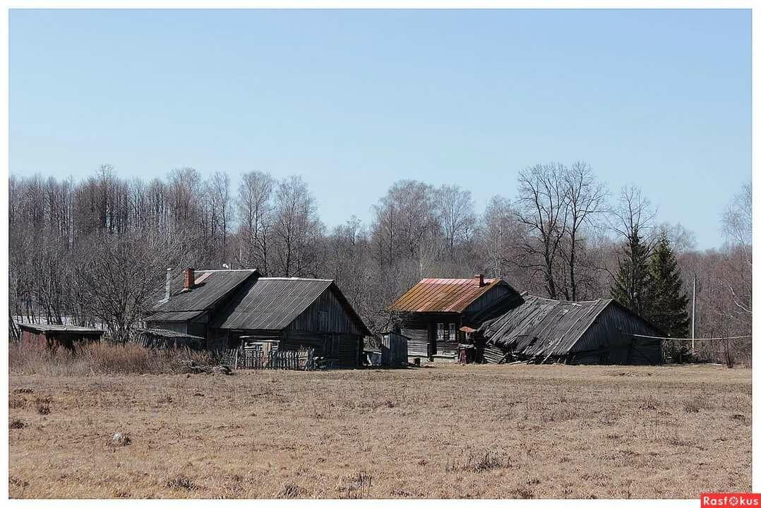 фото жупановской деревни крестец спинка них