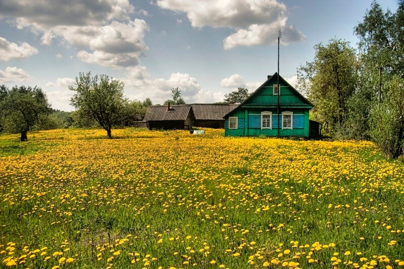 Деревня в тверской области почигаево фото хоть