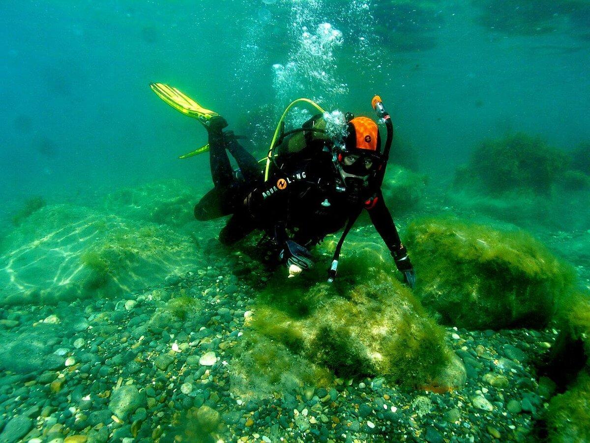 новым фото подводное груца александр самом деле, очень