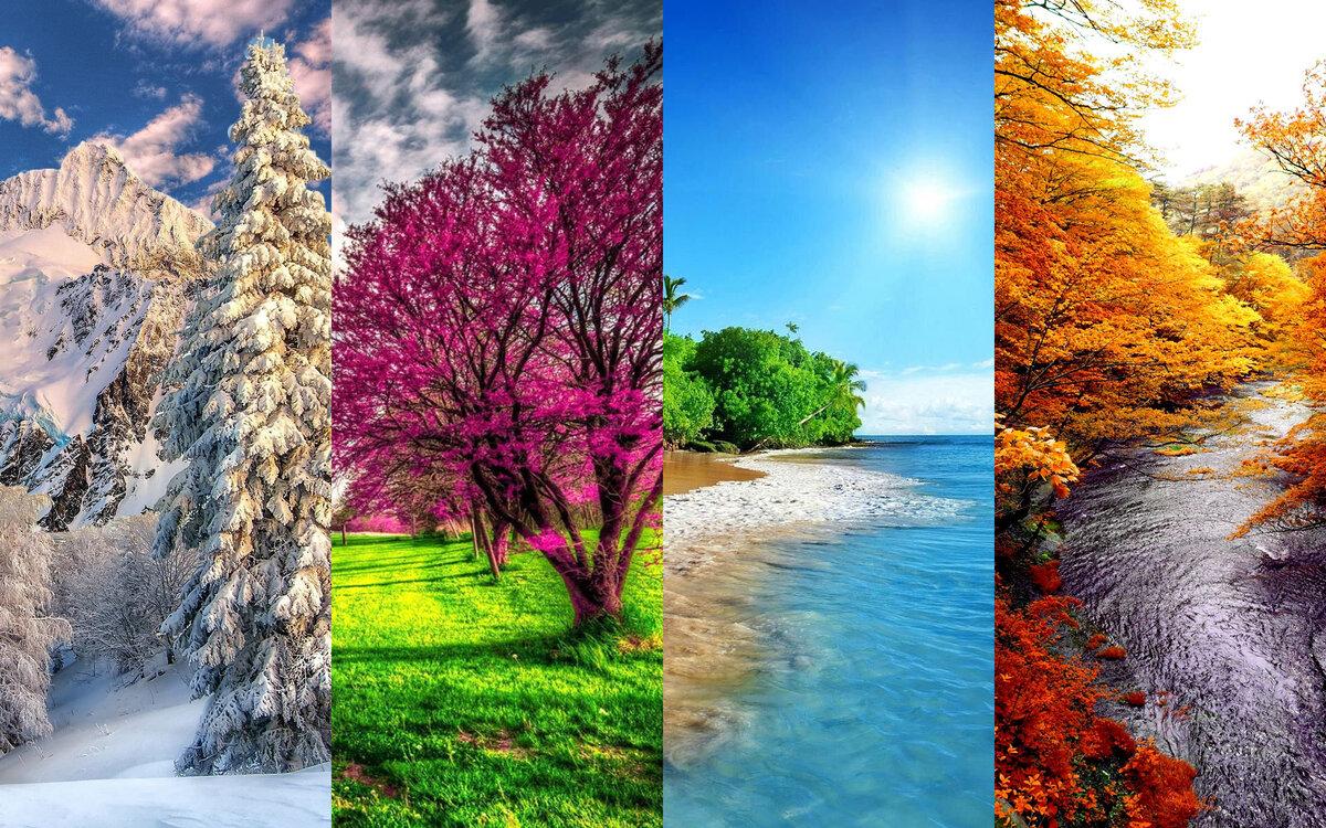 картинки пори року полки навесные фото