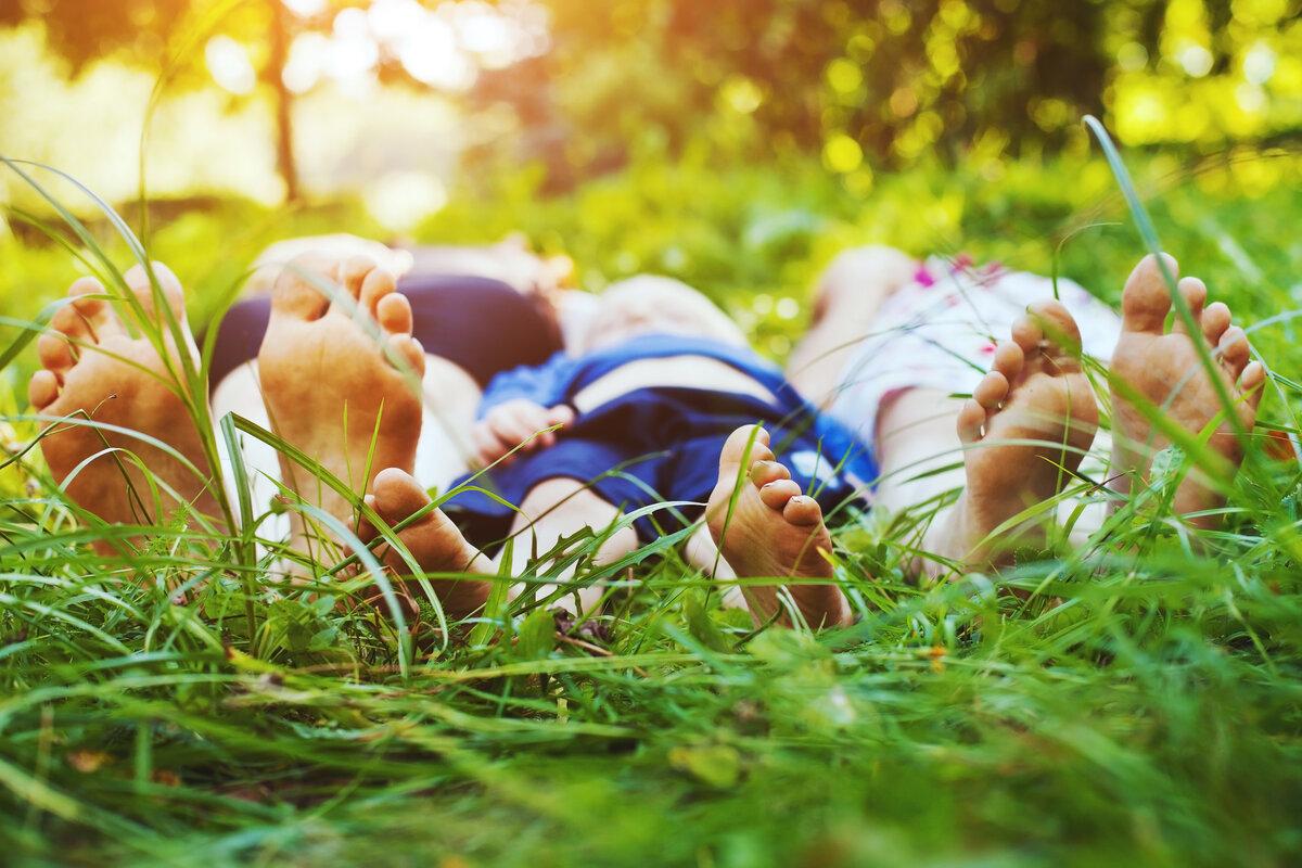 фото семьи на природе летом без лица этом, наиболее частыми
