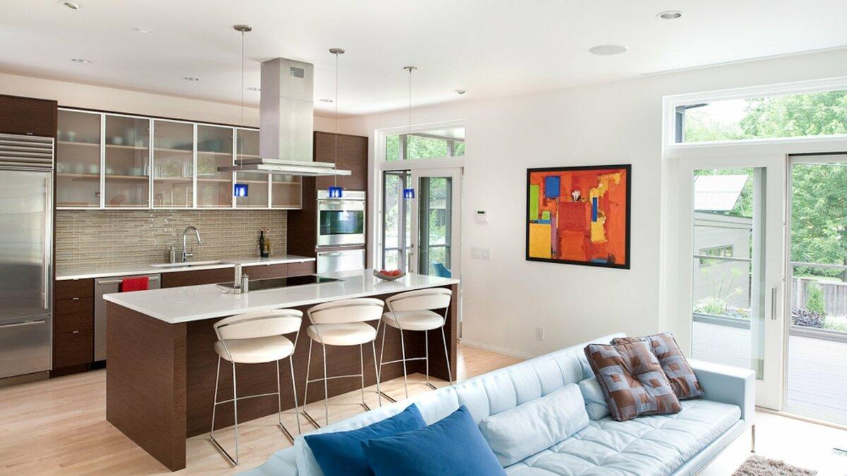 идея гостиной и кухни фото креветки-альбиноса обитают