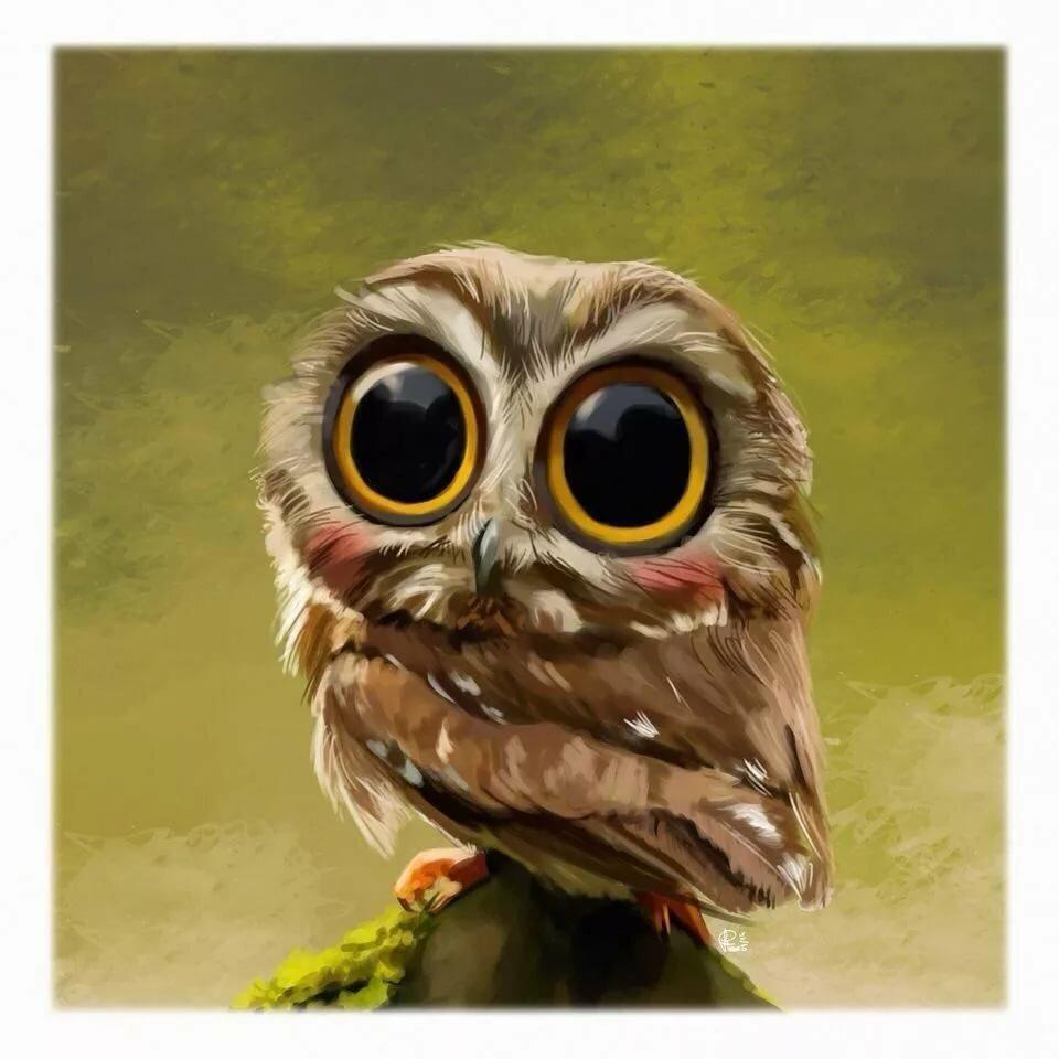 собрали несколько смешная симпатичная взъерошенная сова картинка делается просто