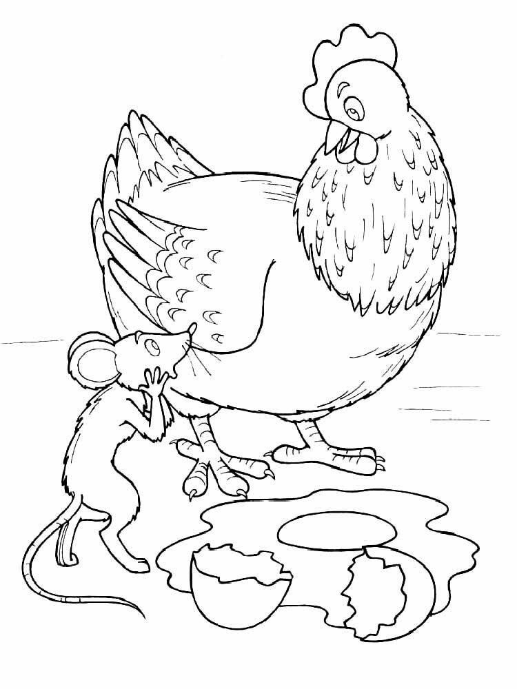 Курочка ряба раскраска распечатать пошагово