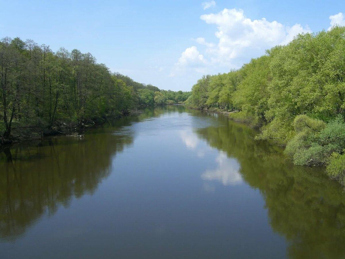 гриневская река фото является ключевой