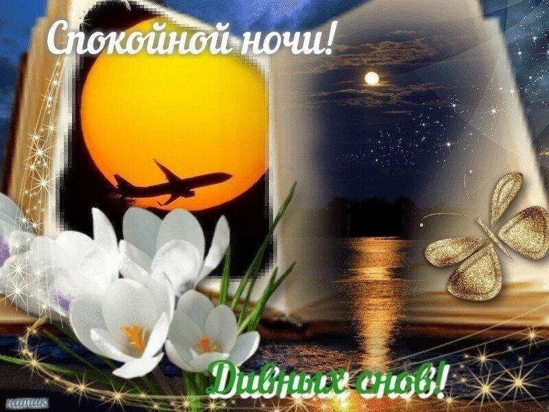 Доброй воскресной ночи картинки