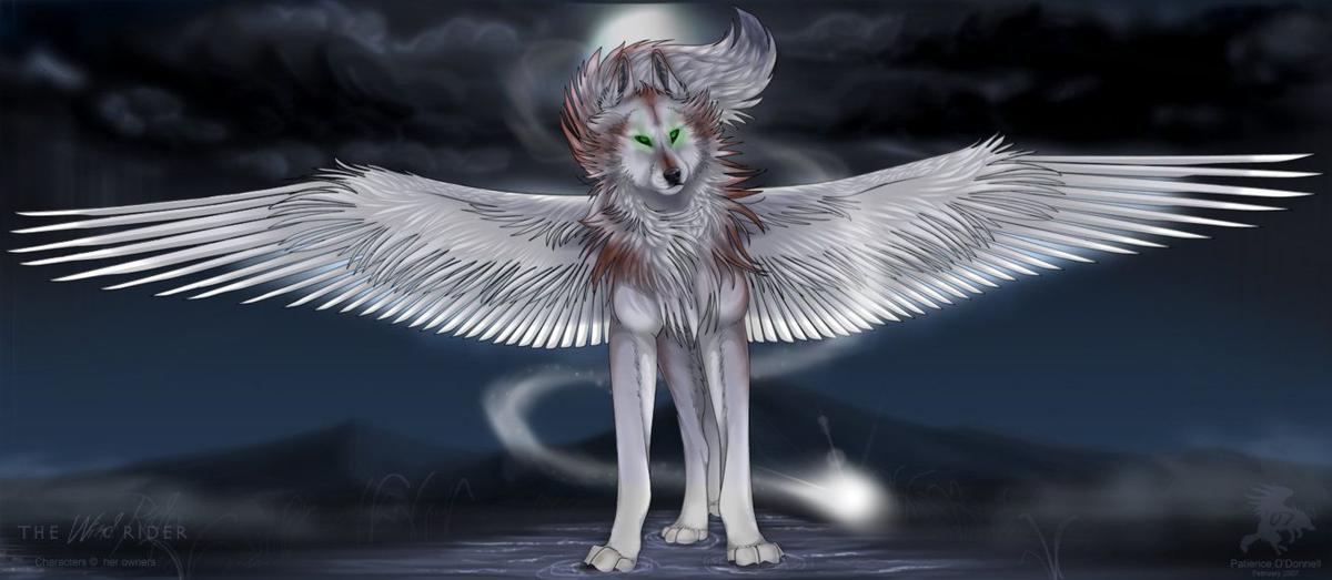 Картинки большие волки с крыльями тыс изображений