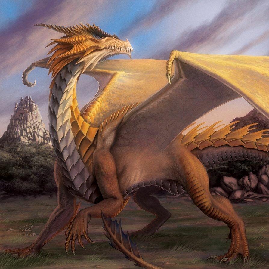 легенда золотого дракона в картинках