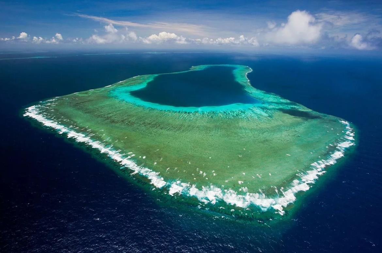 разновидности фотография большого барьерного рифа картинки, ржачные