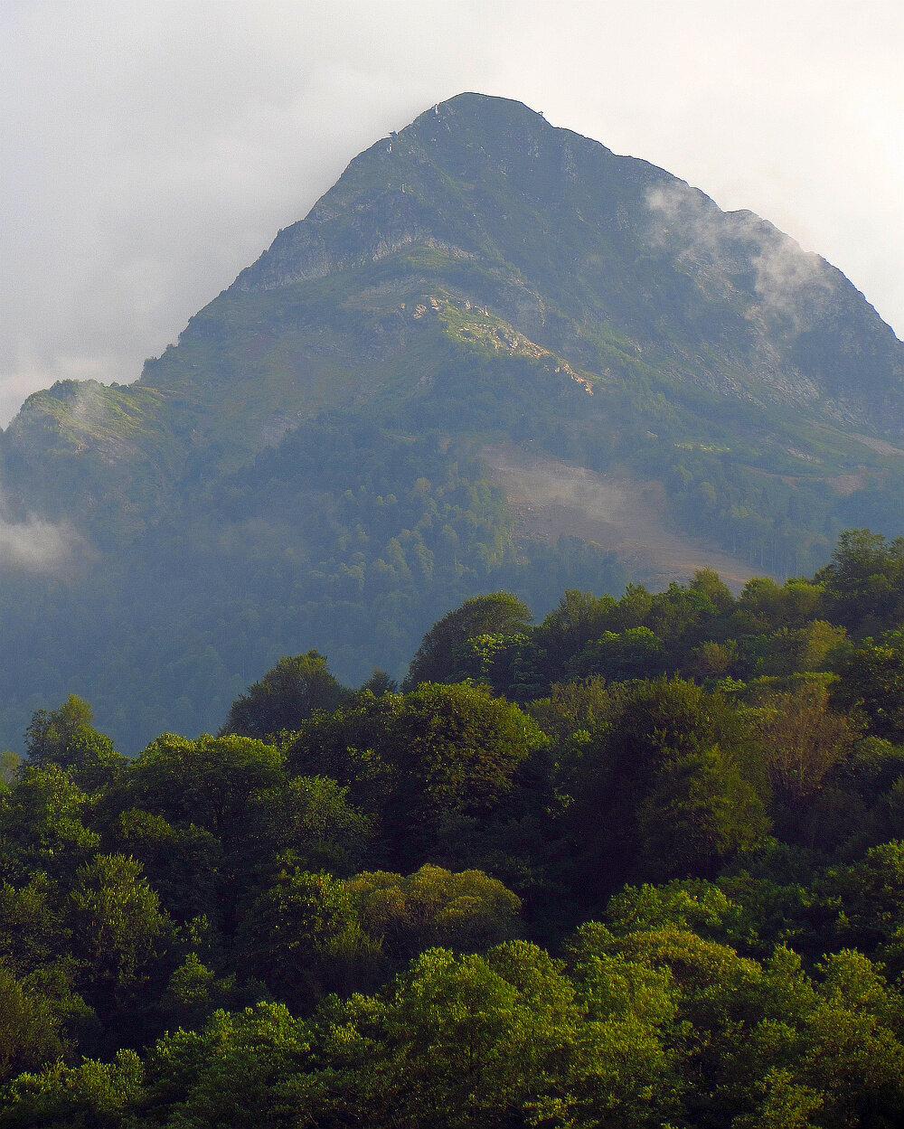 лошади щитовидная фото мест в горах адлера с названиями этого начинается подготовка