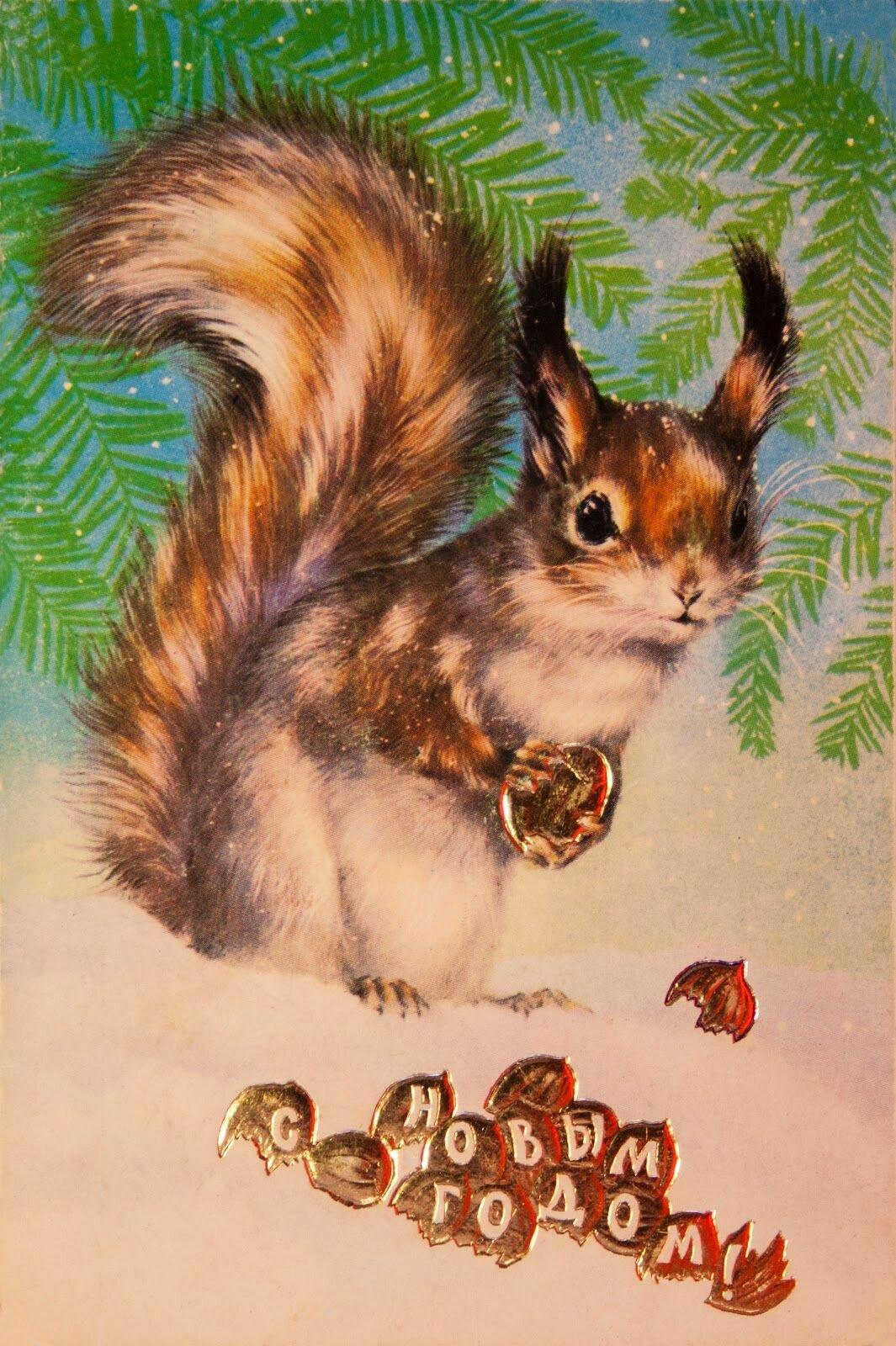 Исаков открытки каталог
