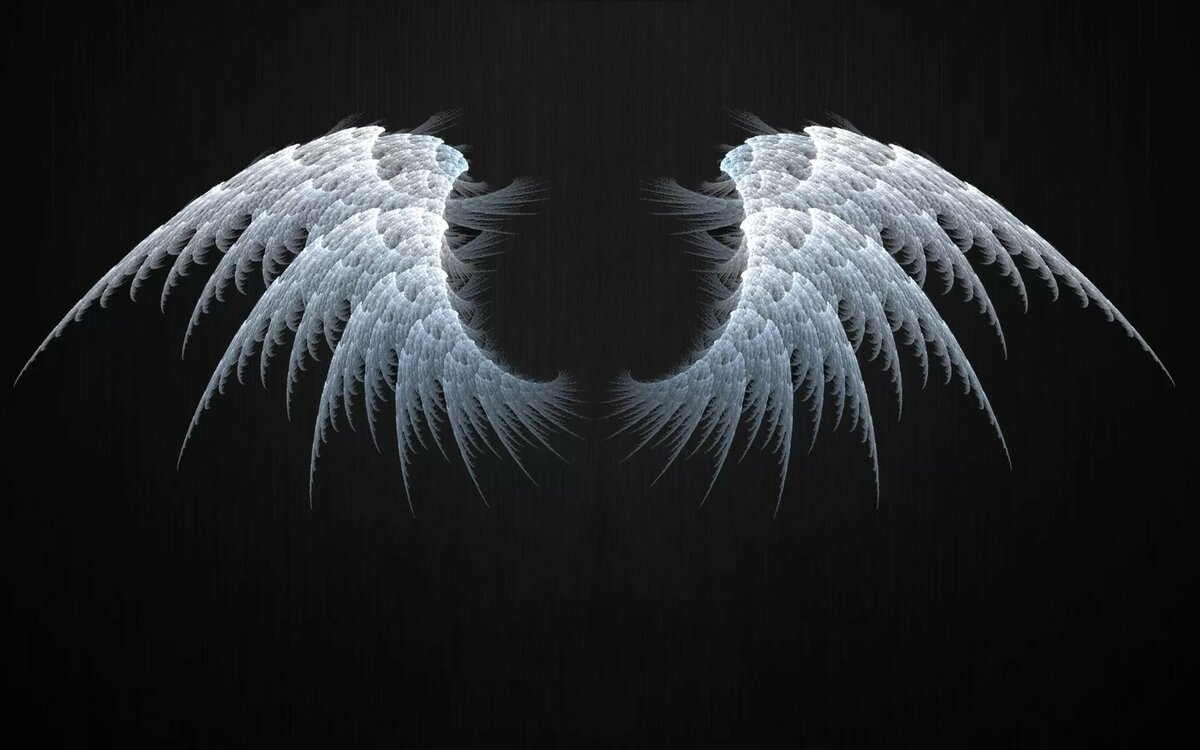 Картинки крылья на рабочий стол