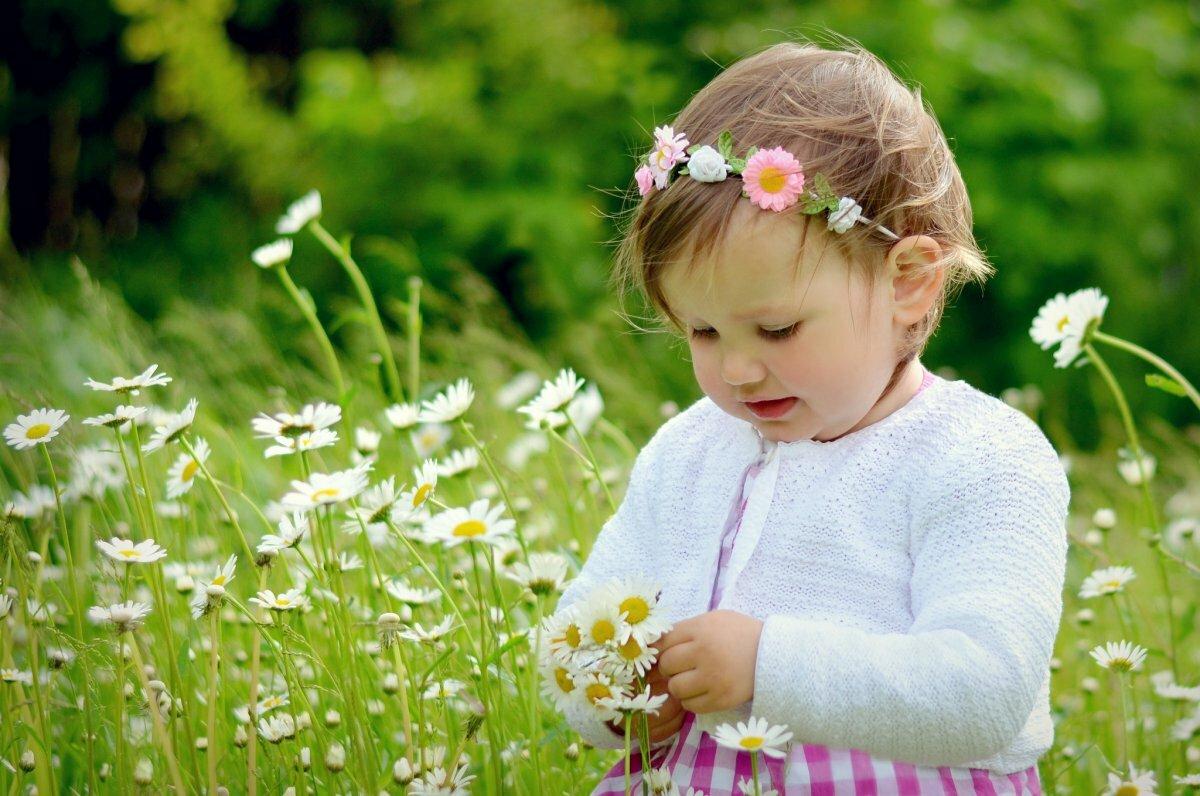 Картинки с малышками в ромашках делится
