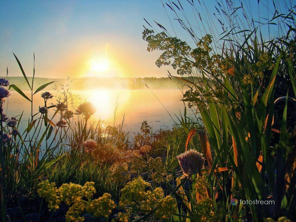 Солнца утром и вечером картинки