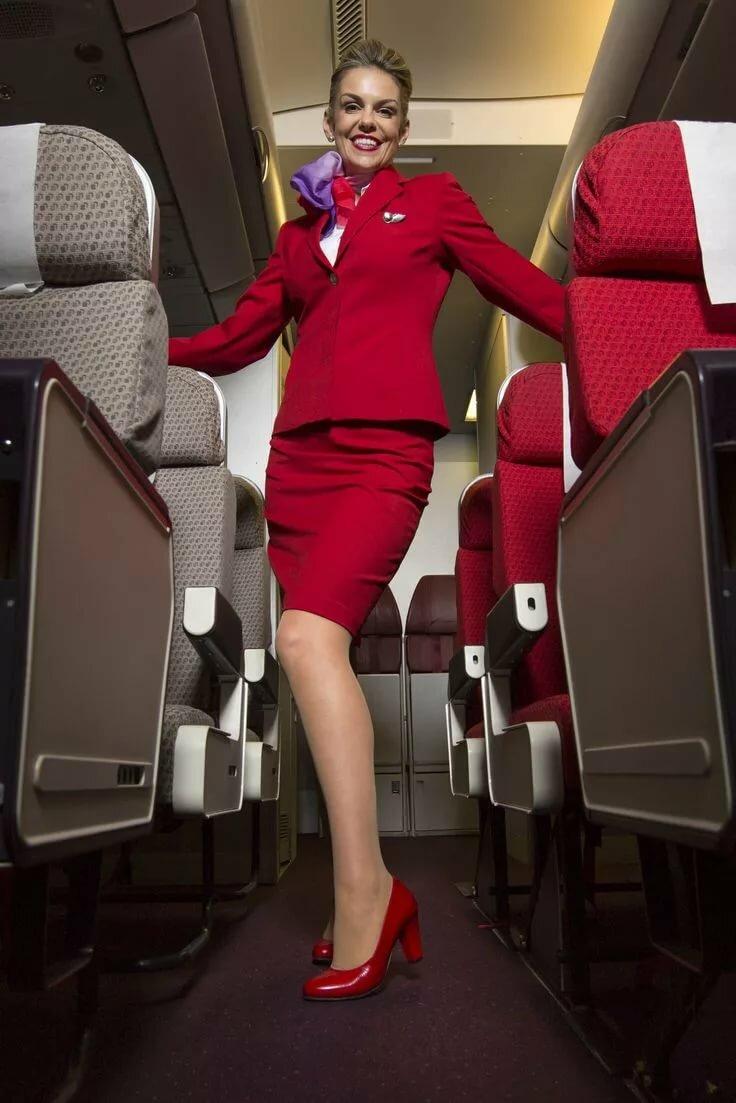 молодые стюардессы фото