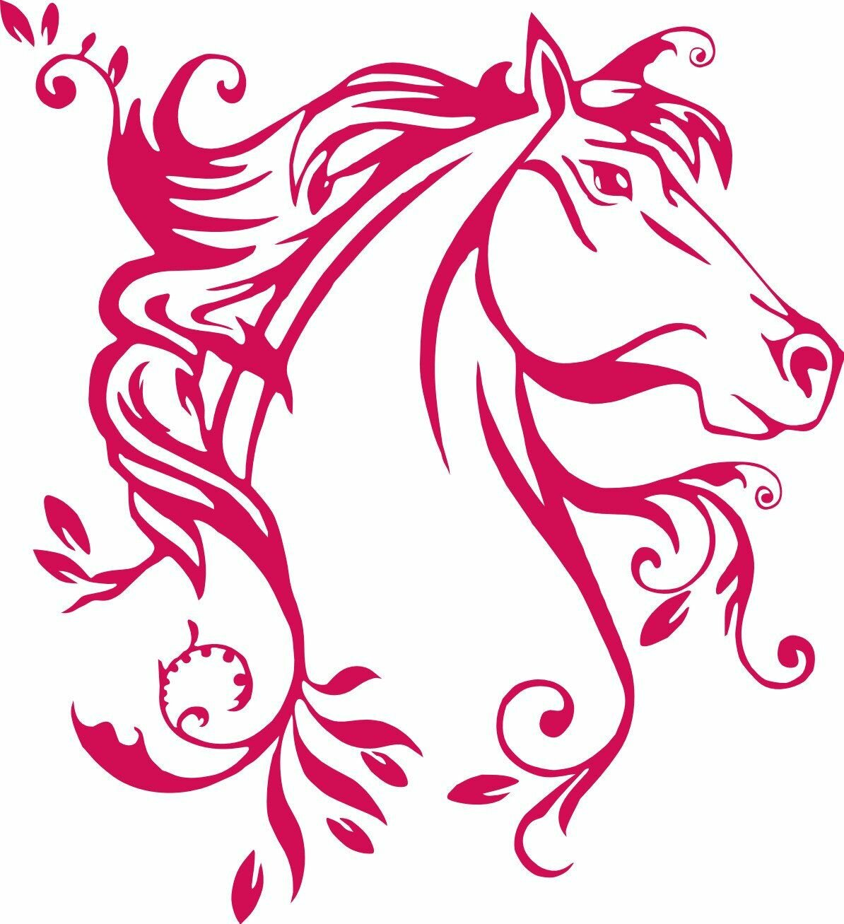 водолей лошадь картинки салатах квашеной капустой