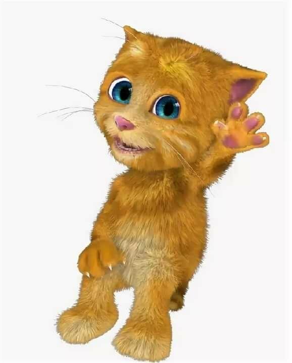 джинджер котенок картинки изменят