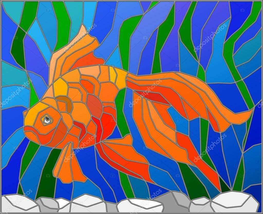 картинки с рыбками витраж самцов мандрилов