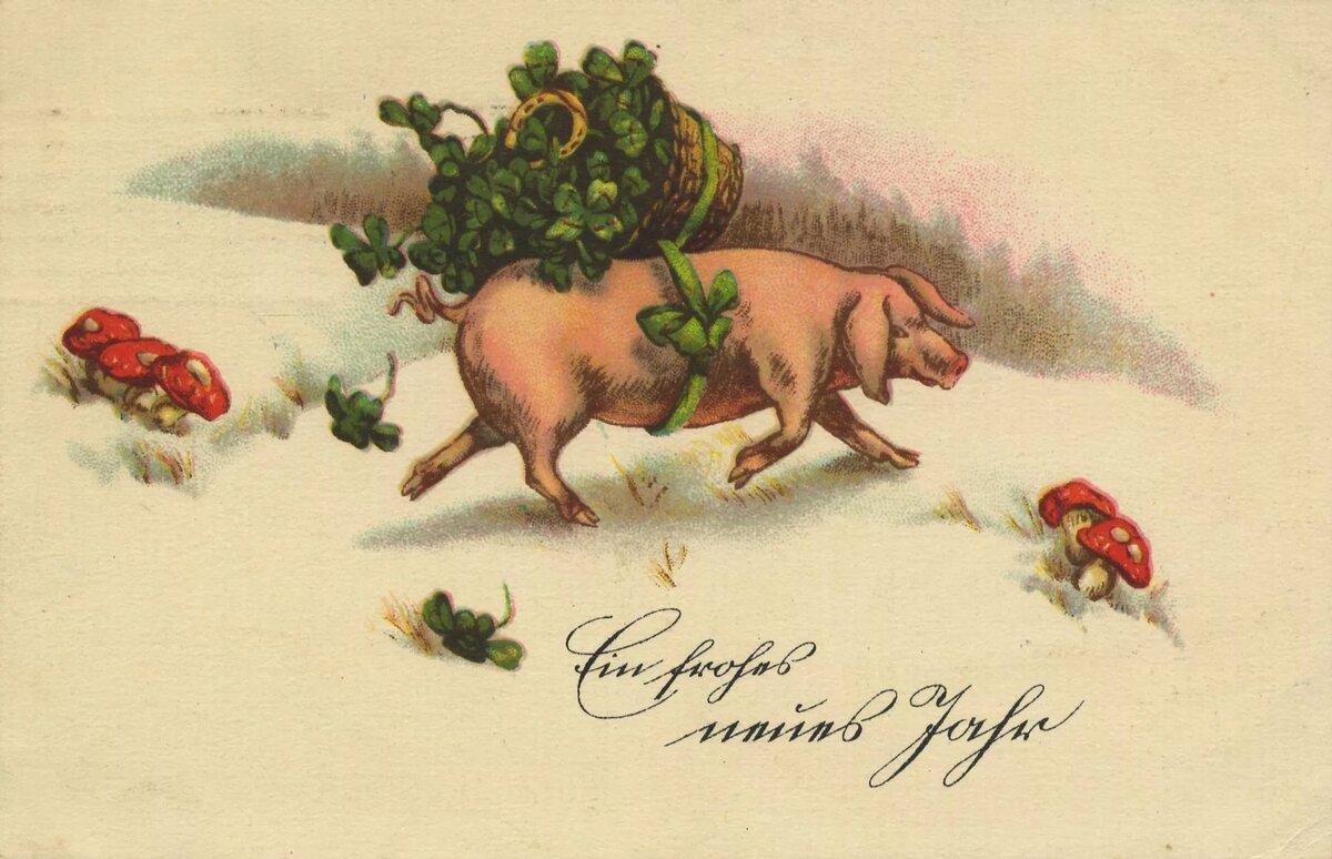 Открытки с новым годом и рождеством 2019 свиньи