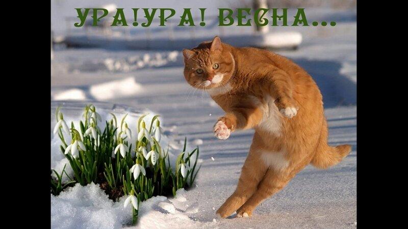Картинка про понедельник и весну