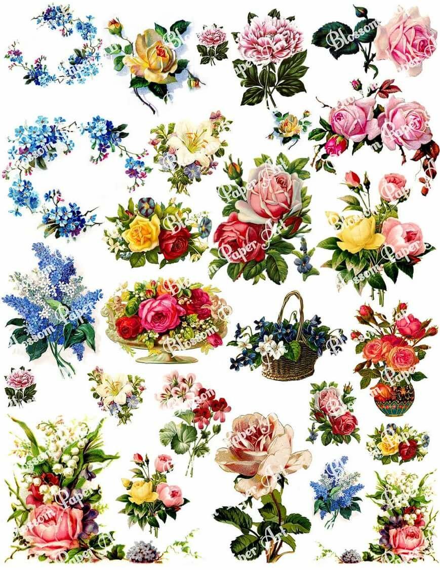 Наклейки цветы картинки