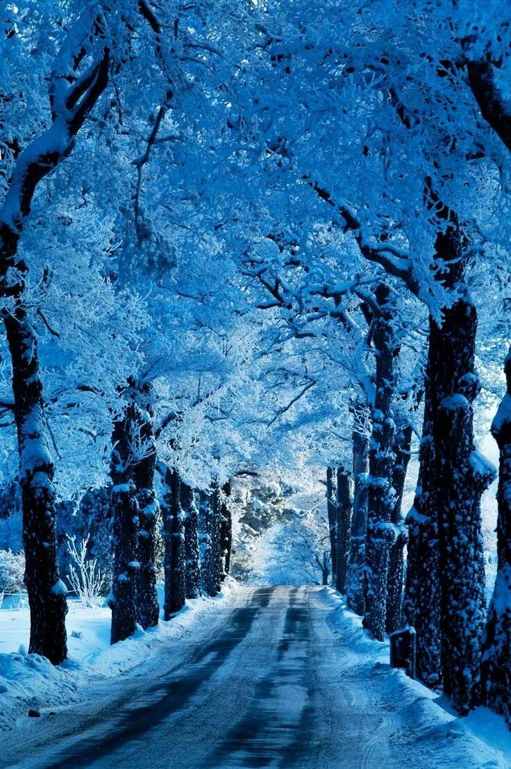 Зима картинки синие