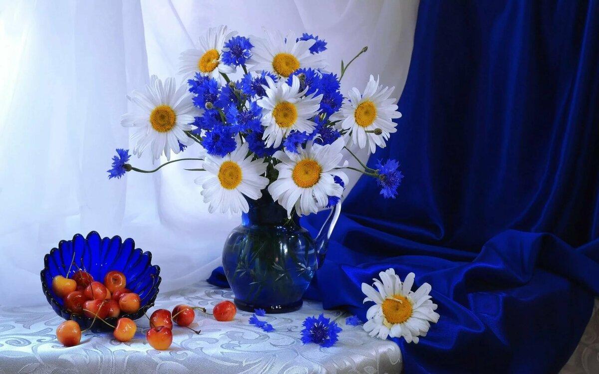 могут васильки и розы картинка множеством