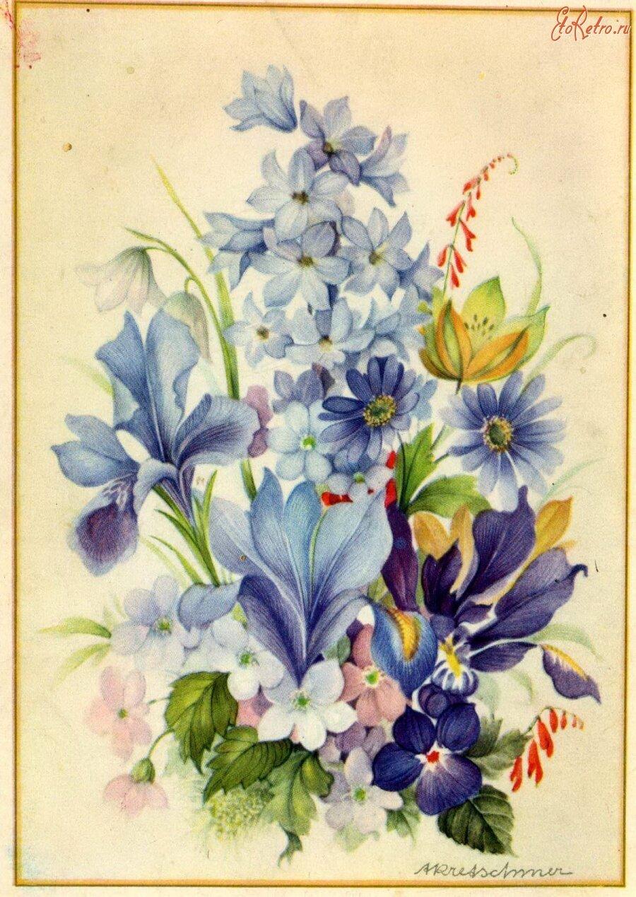 экскурсонных рисуем открытку с цветами национальной одежды