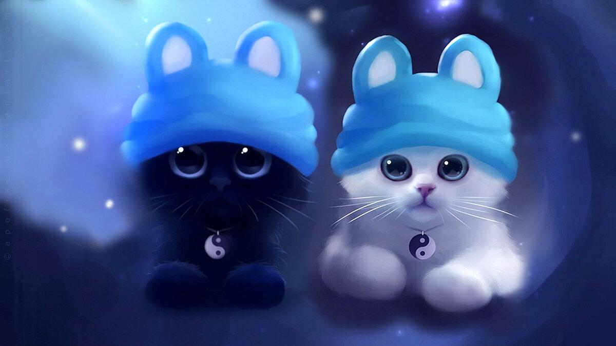 Крутой котенок картинки