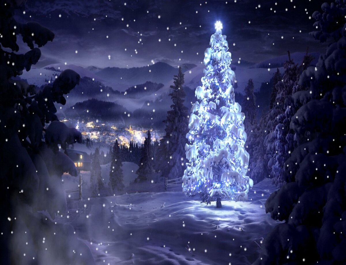 нежностью картинки ночь лес новый год смотря