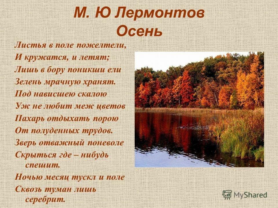стихи про пейзажи каждый