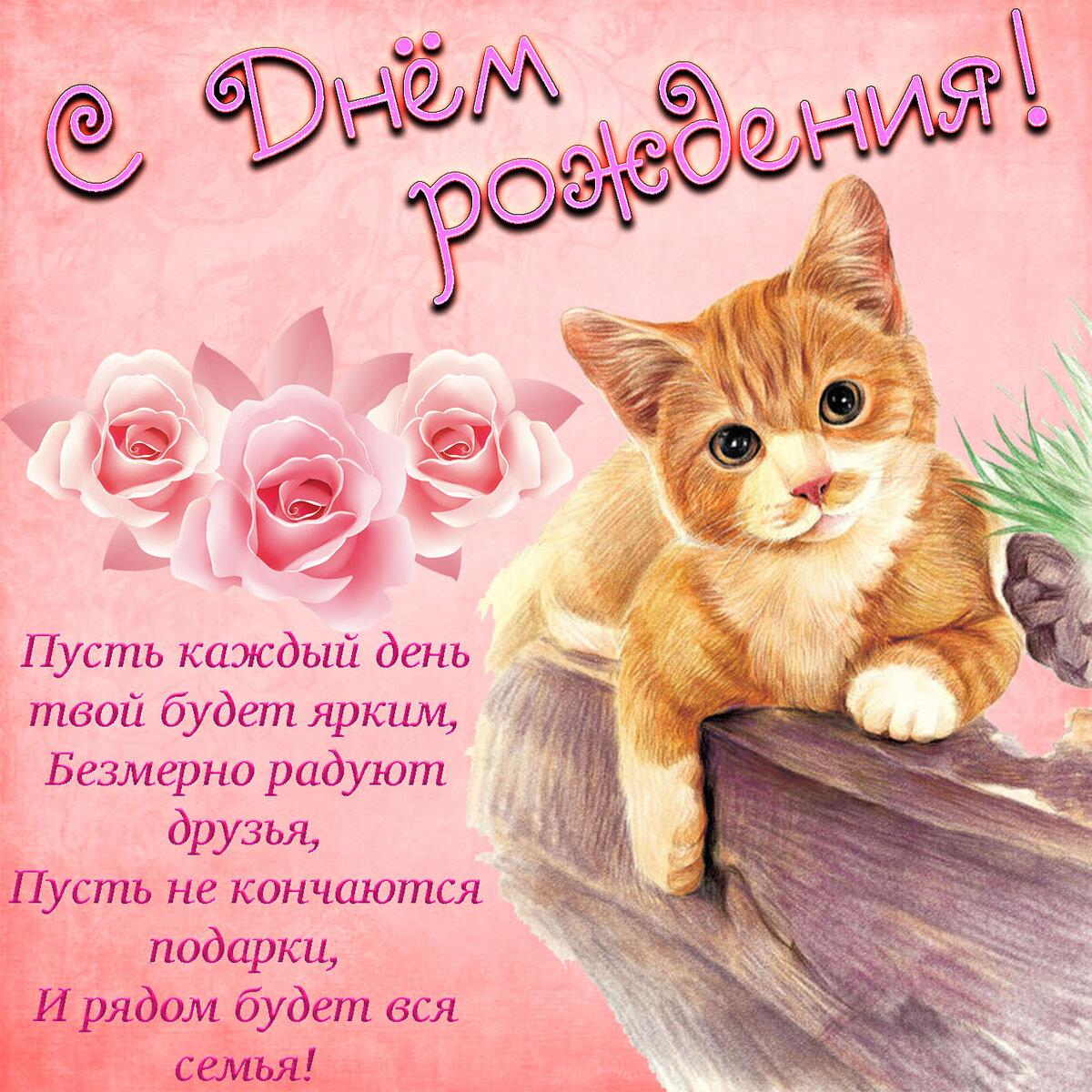 стихи с днем рождения котенок картинки
