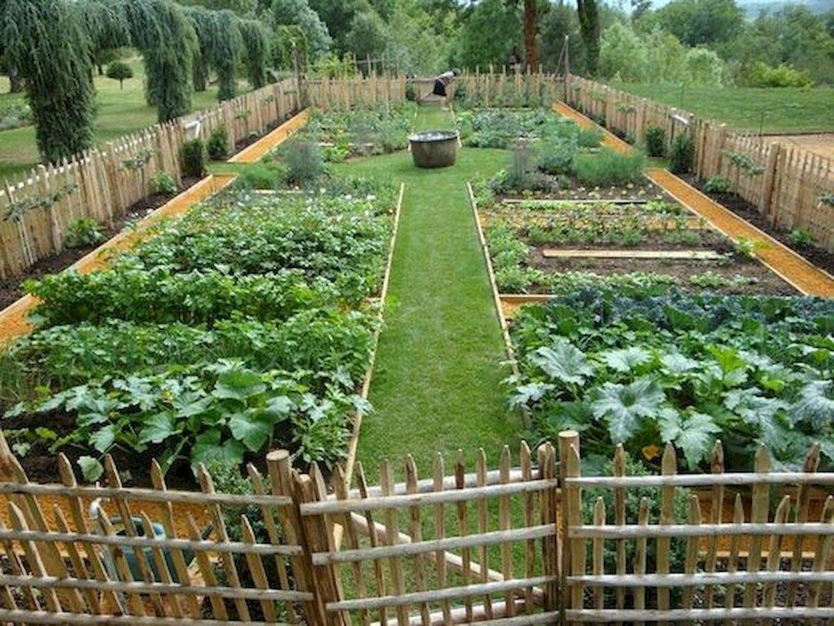 картинки огород с грядками станок для