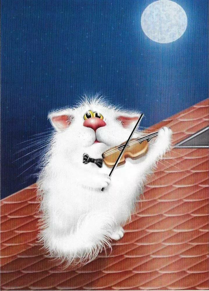 них приколы открытки коты это