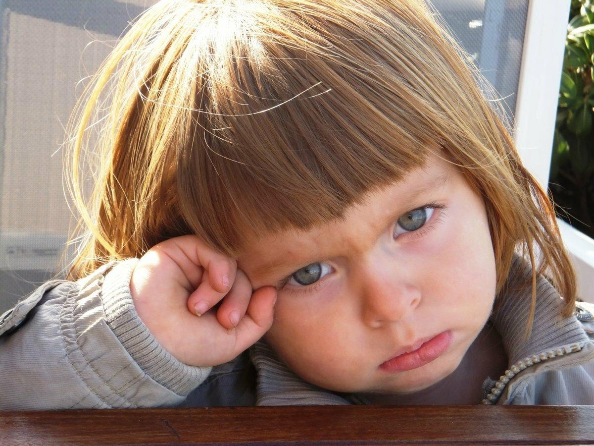 гранит картинки с обиженными детками шрек майнкрафт