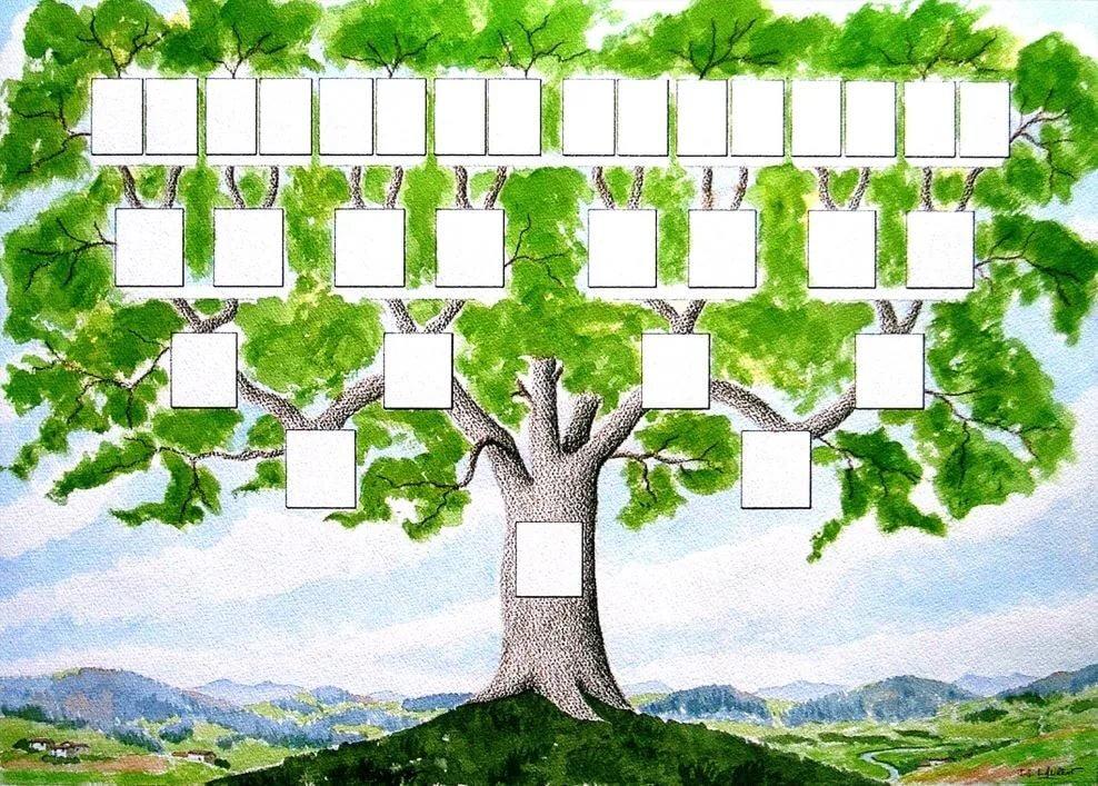 генеалогическое древо картинка как шерстяной ткани