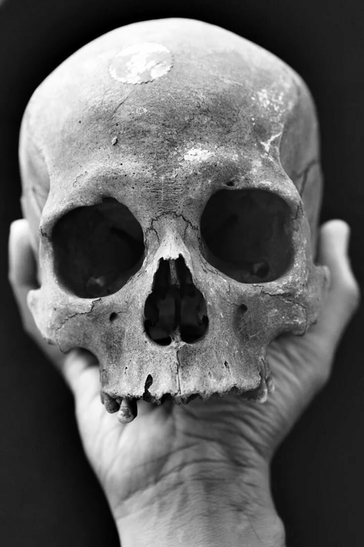 фото юрий черепок были качественными надежными