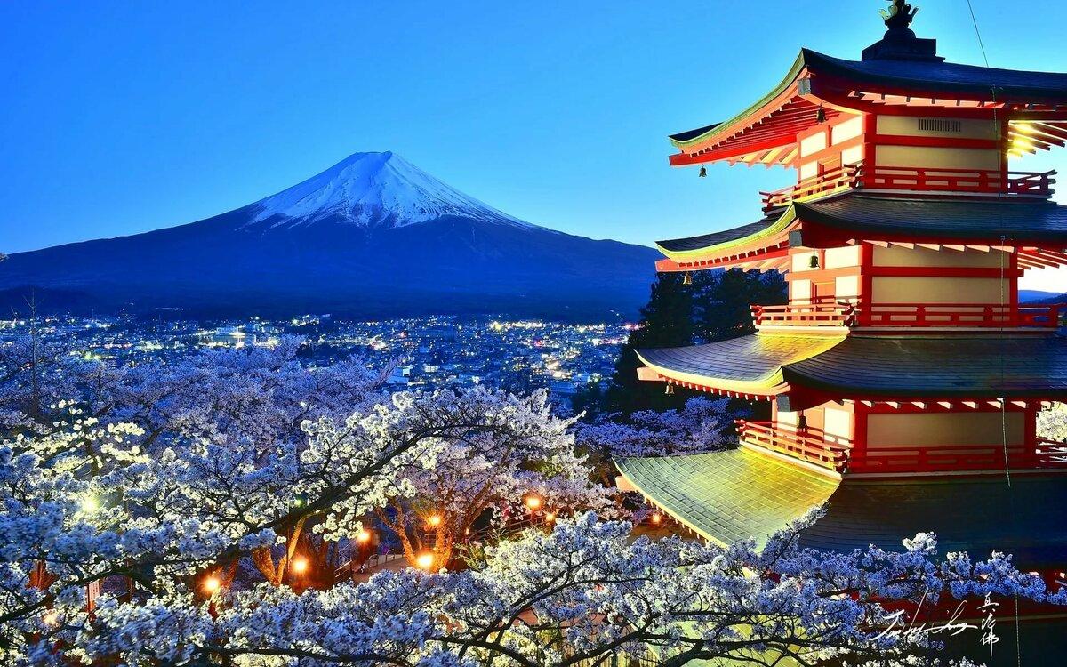 фоне картинка пагода и сакура останетесь пятке