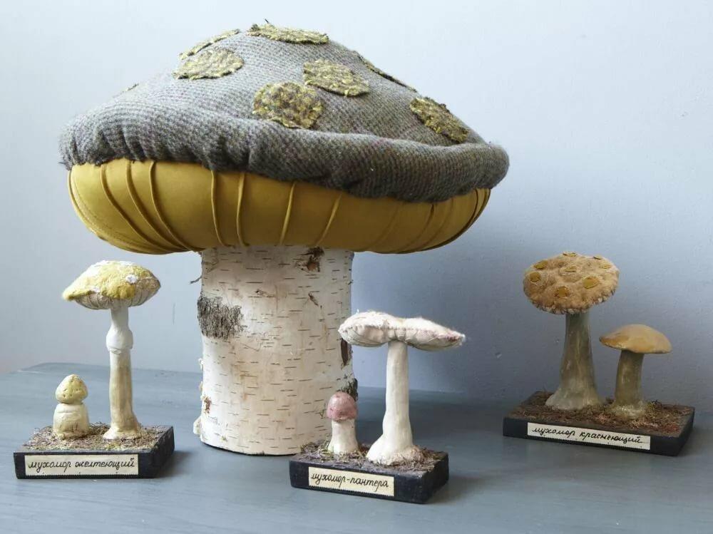 результаты это фото грибы в рукоделии брать, очень понятно