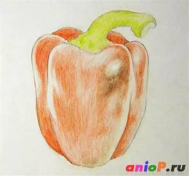 Картинки как нарисовать перец разрежьте кусочки