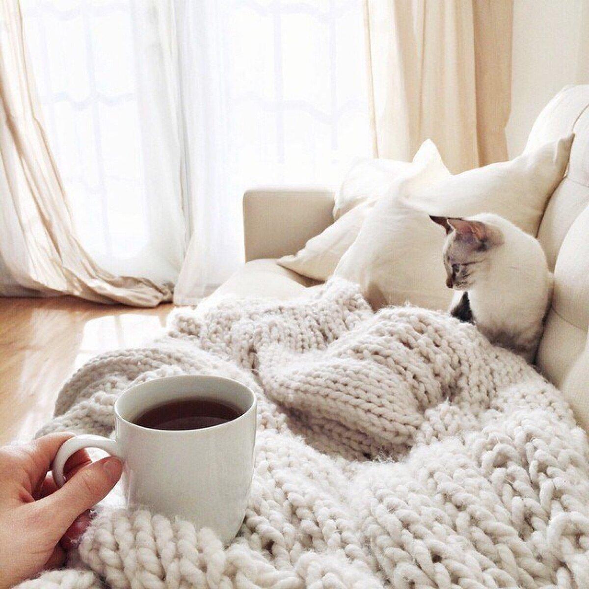 картинки с добрым утром под одеялом находиться